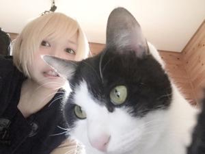 みゆはんヒストリーまとめ│2015~2019年